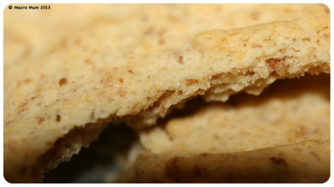 Day 127 - Biscuit